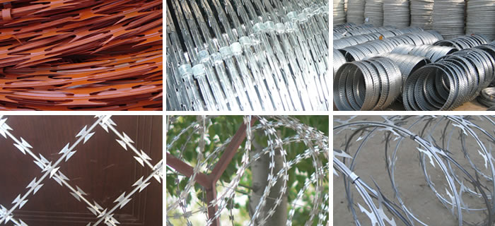 Many pieces of razor wire in different types: concertina razor wire, flat wrap razor wire, razor wire coil, etc.
