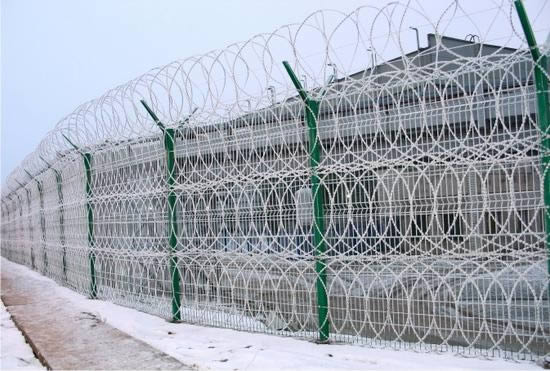Razor wire concertina is installed in four rows.