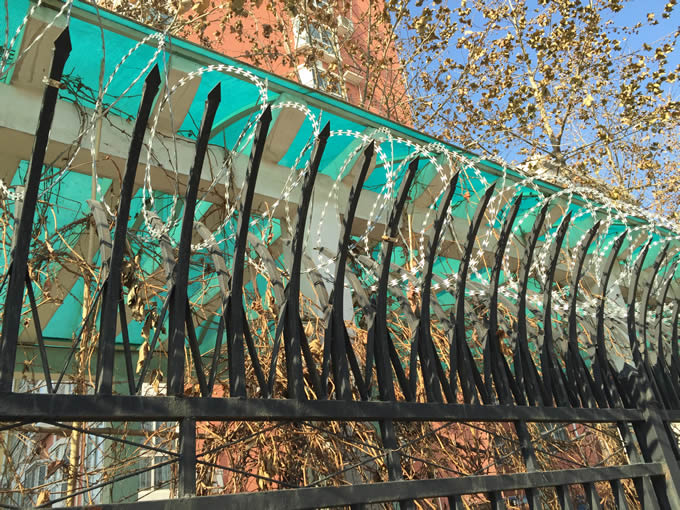 A coil of single type concertina wire is installed on the top of black welded fence by Y-shaped post.